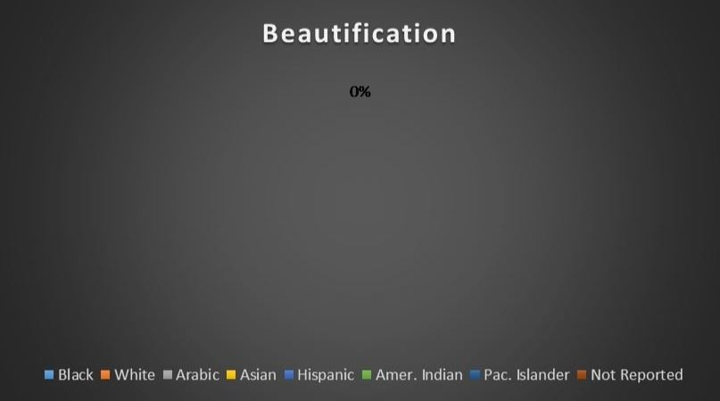Beautification Ethnicity Breakdown